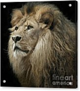 The King Acrylic Print