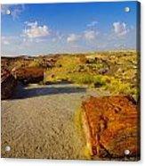 The Painted Desert Acrylic Print