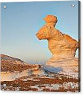 The Rabbit Stone Formation In White Desert Acrylic Print