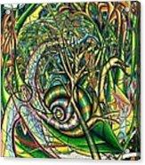The Snail Acrylic Print