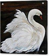 The Swans Of Albury Manor I Acrylic Print