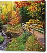There Is A Harmony In Autumn Acrylic Print