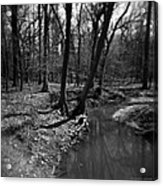 Thorn Creek Acrylic Print