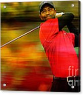 Tiger Woods Acrylic Print by Marvin Blaine