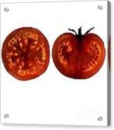 Tomato Slices Acrylic Print