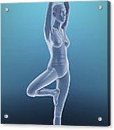 Tree Yoga Pose Acrylic Print