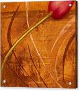 Tulips Are People Xi Acrylic Print