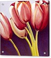 Tulips Are People Xiii Acrylic Print