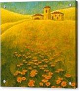 Tuscan Gold 2 Acrylic Print