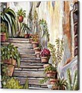 Tuscan Steps Acrylic Print