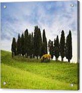 Tuscany - Montalcino Acrylic Print