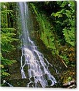 Twin Falls Creek Mount Rainier Acrylic Print