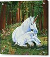 Unicorns Lap Acrylic Print
