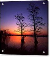 Usa, Tennessee, Reelfoot National Acrylic Print