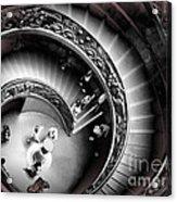 Vatican Architecture Acrylic Print
