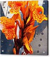 Ventura Flower Acrylic Print by Ron Regalado