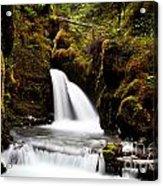 Virgin Creek Falls Acrylic Print by Chris Heitstuman