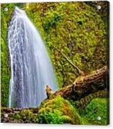 Wahkeena Falls Oregon Acrylic Print