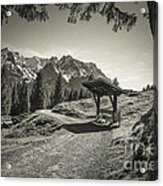 walking in the Alps - bw Acrylic Print