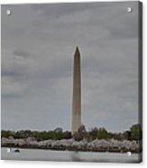 Washington Monument - Cherry Blossoms - Washington Dc - 011312 Acrylic Print by DC Photographer