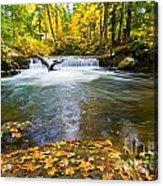 Waterfall On Whatcom Creek Acrylic Print