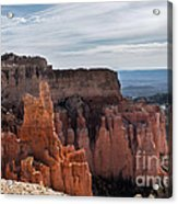 Weathered By Time Acrylic Print