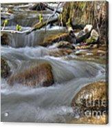 Whites Creek Acrylic Print