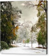 Winter In Autumn Acrylic Print