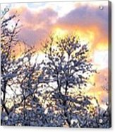 Wintry Sunset Acrylic Print by Will Borden