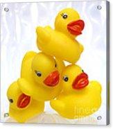 Yelow Ducks Acrylic Print by Bernard Jaubert