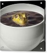 Yikes There Is A Frog In My Java Acrylic Print