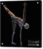 Yoga Half Moon Pose Acrylic Print