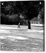 Young Boys Playing Cricket In A Park Near Delhi Zoo Acrylic Print