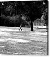 Young Boys Playing Cricket In A Park Near Delhi Zoo Acrylic Print