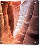Zebra Canyon  Acrylic Print by Johnny Adolphson