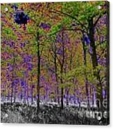Forest Art Acrylic Print