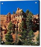 Red Canyon Acrylic Print
