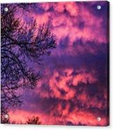 Red Sky At Morning Acrylic Print