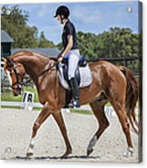 Rocking Horse Stables Acrylic Print
