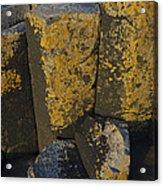 The Giants Causeway Acrylic Print