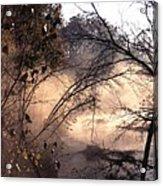 102201-39 Acrylic Print