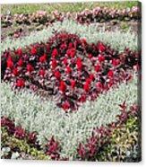 Flowerbed Acrylic Print