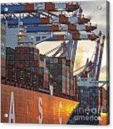 Hamburg Harbor Container Terminal Acrylic Print
