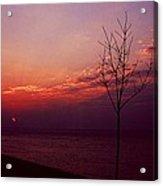 112601-20 Acrylic Print
