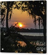 Lowcountry Spanish Moss Sunset Acrylic Print