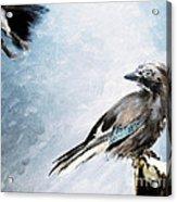The Wintery Tales Acrylic Print