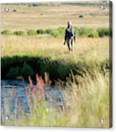 Young Woman Fly Fishing The West Fork Acrylic Print
