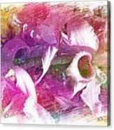 Orchids Acrylic Print