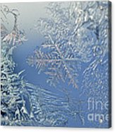 Frost On A Windowpane Acrylic Print