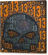13 Skull Acrylic Print